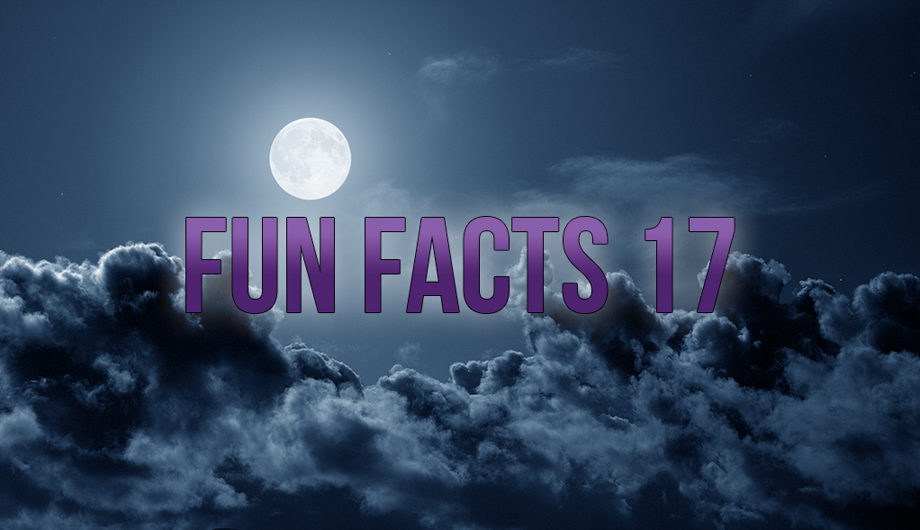 Fun Facts 17