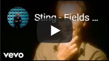 Sting4