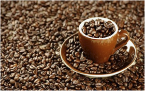 Coffee_Beans_And-More_Coffee_Beans.png